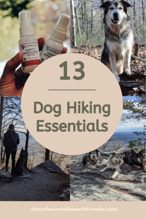 Dog hiking essentials pin