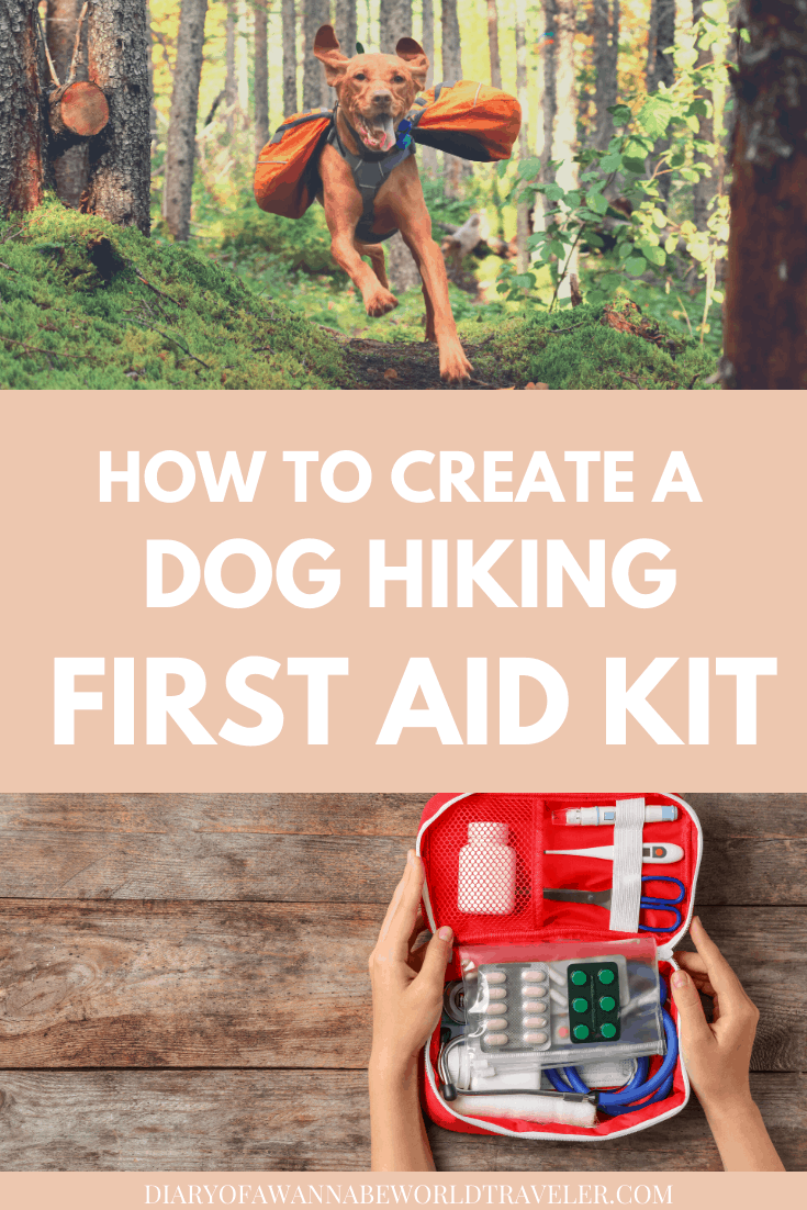 How to create a dog hiking first aid kit