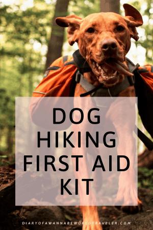 dog hiking first aid kit
